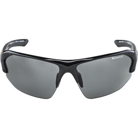 Alpina Lyron HR VL Gafas, black